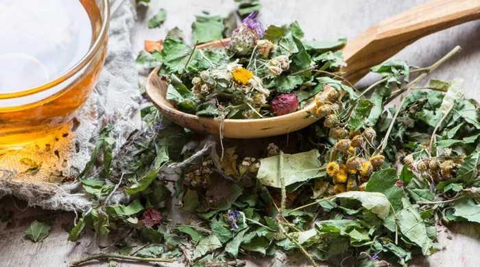 Алтайские травы для очищения сосудов