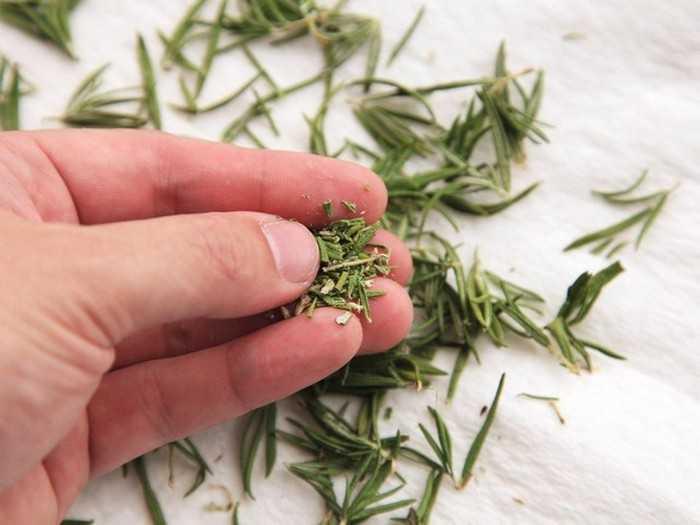 Тибетская чистка травами