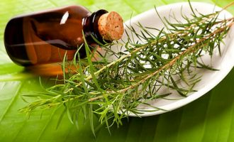 Применение  масла чайного дерева в домашних условиях