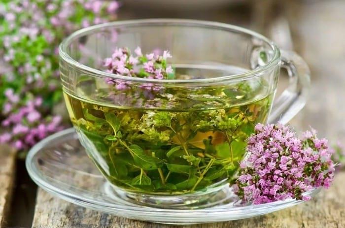шоубизнеса бесстыдно можно ли пить лаванду как чай девушка сможет