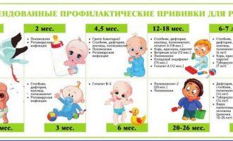 Памятка родителям: какие прививки и в каком возрасте делают детям