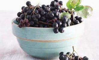Свойства черноплодной рябины: полезные заготовки
