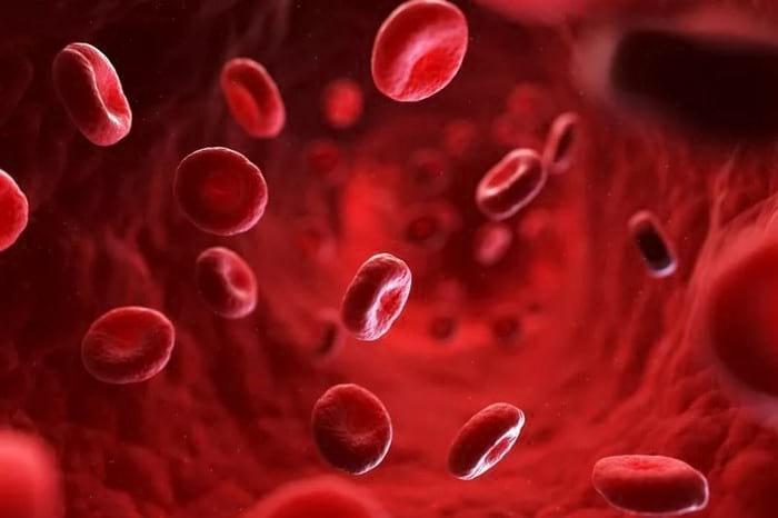 Как узнать группу крови и резус-фактор в домашних условиях