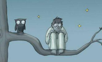 мужчина и сова ночью на дереве