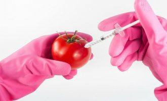 шприц в помидоре
