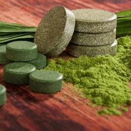 Спирулина: полезные свойства и противопоказания целительной водоросли