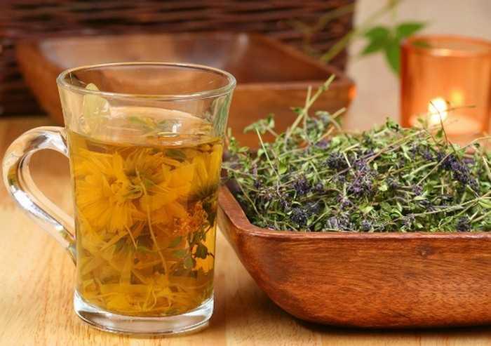 Лекарственные травы для очищения легких
