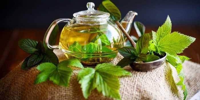 Как приготовить домашний смородиновый чай