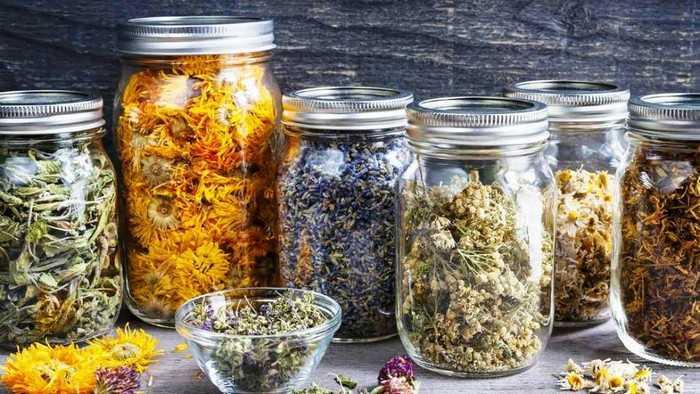 Лучшие травы для чистки сосудов