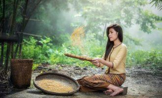 чем полезна рисовая вода