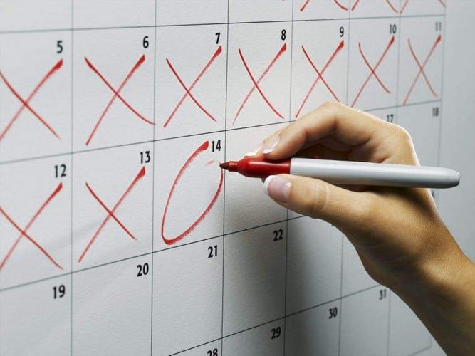 Менструальный цикл у женщин: фазы цикла