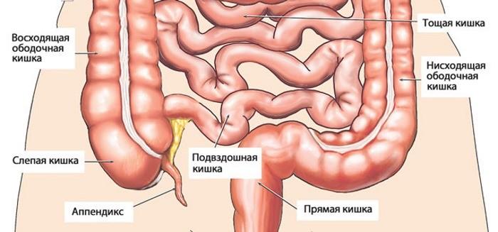 Болит под ребром с левой стороны что это может быть