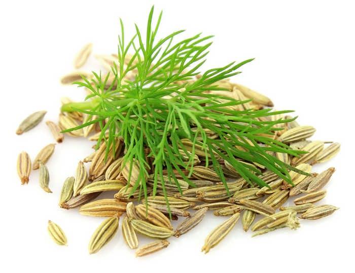 семена укропа в народной медицине