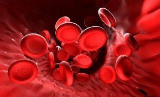 Норма гемоглобина в крови по возрастам у мужчин, женщин и детей