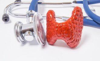 расшифровка анализа крови на гормоны щитовидной железы