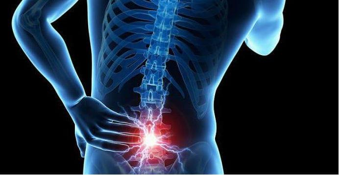 локализация боли в поясничном отделе позвоночника