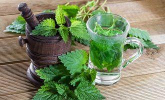 Использование крапивы: польза и вред, способы лечения