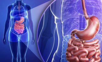 Очищение кишечника перед колоноскопией: как правильно подготовиться к процедуре