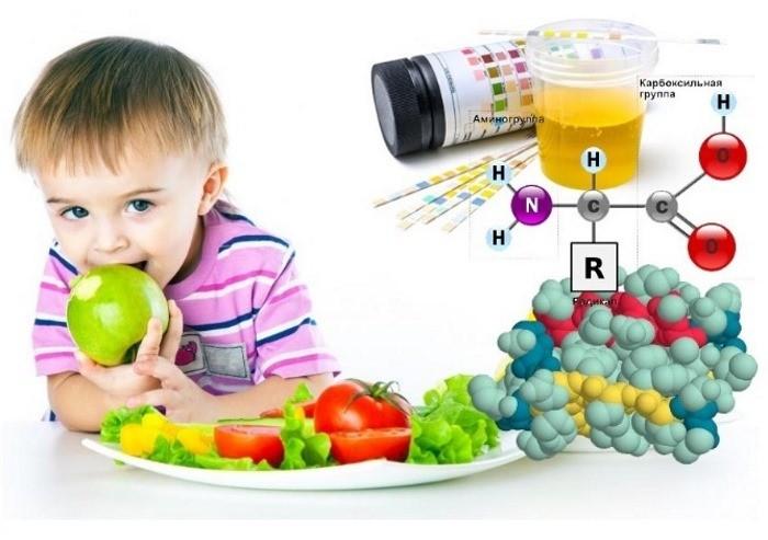 диета при белке в моче