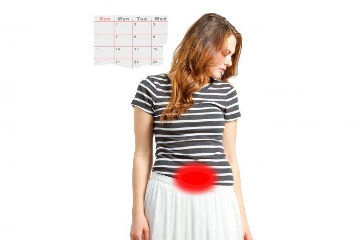 женщина, календарь месячных