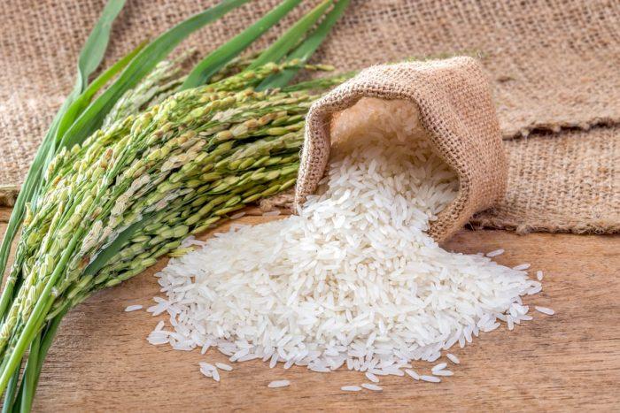 рис в зернах и в колосках